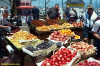 sf000701_fruit_stand_rl.jpg